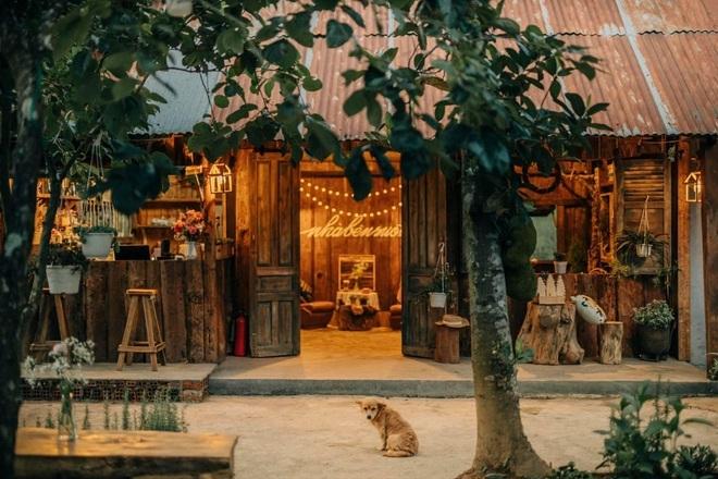 Những quán cà phê trốn khói bụi, ẩn trong rừng ở Đà Lạt - 5