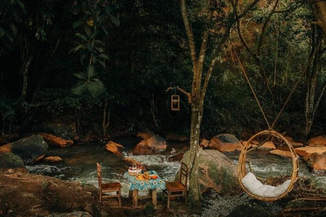Những quán cà phê trốn khói bụi, ẩn trong rừng ở Đà Lạt - 6