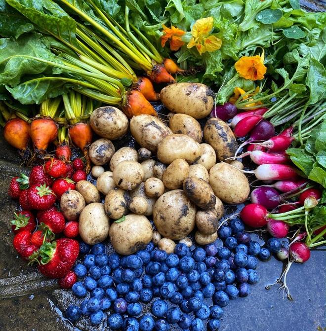 Cô gái trẻ dùng côn trùng có lợi diệt sâu hại ở khu vườn ngập rau trái - 5