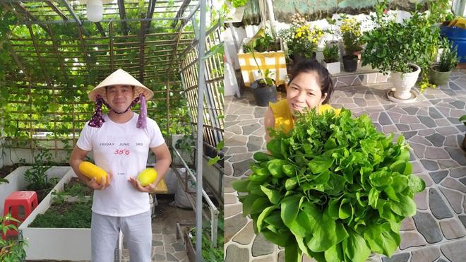 Không gian xanh mướt như góc du lịch miễn phí của gia đình ở Bình Thuận - 6