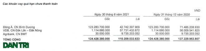 Lỗ 3.000 tỷ đồng, âm vốn chủ sở hữu, đại gia gỗ nguy cơ bị đuổi khỏi sàn - 2