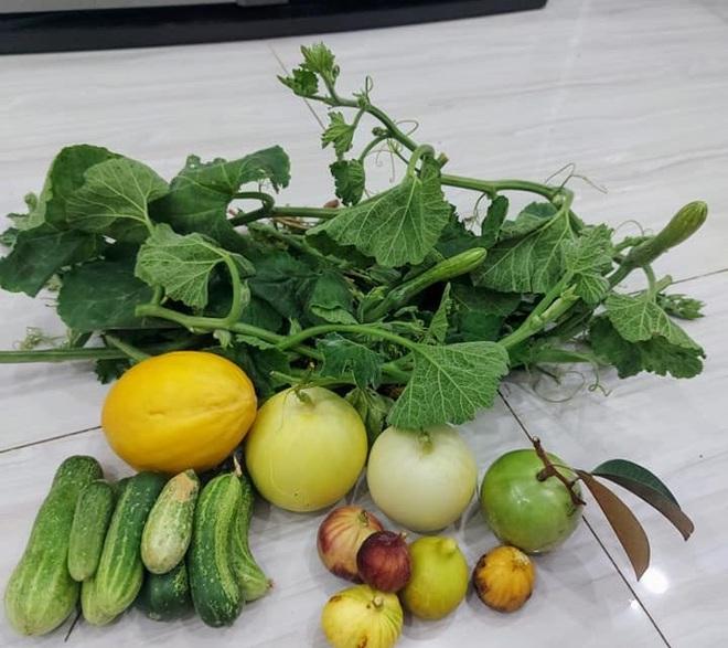 Ông bố đảm vác vật liệu lên sân thượng, xây bồn trồng đủ loại rau trái - 10