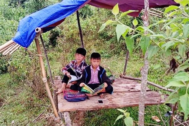 Dù đã có máy điện thoại, nhưng để có sóng vào học trực tuyến, gia đình hai em Dần và Thành phải dựng một cái chòi đơn sơ trên núi cao dò sóng rớt để các em học tập.