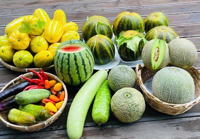 Mẹ Việt tự cuốc đất trồng rau, làm vườn hữu cơ  tại Hàn Quốc - 1