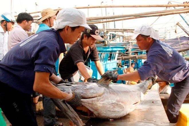 Nỗ lực gỡ thẻ vàng ở Bình Định  - 3
