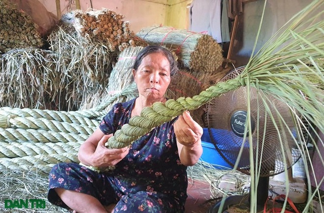 Sống khỏe trong dịch bệnh nhờ cuộn rơm đuôi trâu xuất khẩu sang Nhật - 10