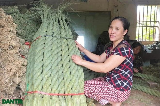 Sống khỏe trong dịch bệnh nhờ cuộn rơm đuôi trâu xuất khẩu sang Nhật - 11