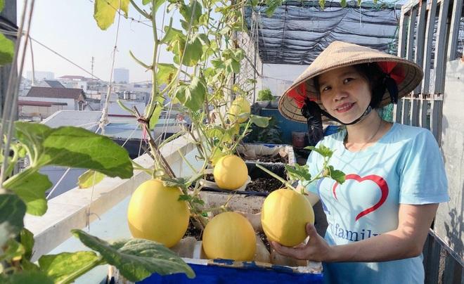 Bất ngờ với vườn rau trái đỉnh cao trên nóc nhà tại Đồng Nai - 12