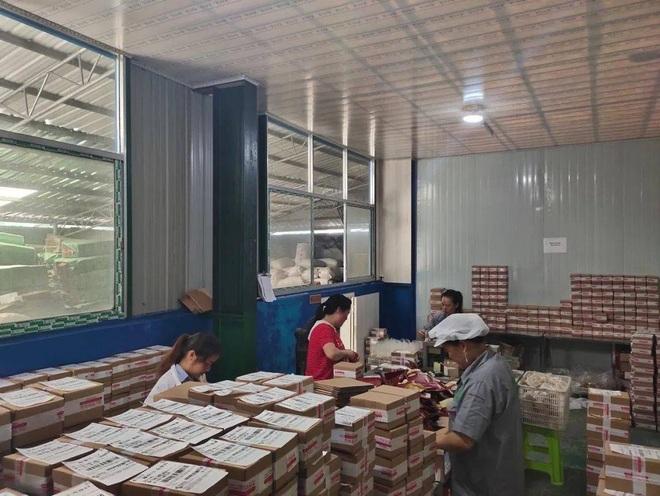 Bỏ phố về quê làm nghề trồng hoa loa kèn, doanh thu chục tỷ đồng mỗi năm - 1
