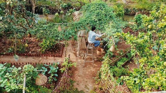 Bỏ phố về quê, cặp vợ chồng Bến Tre làm khu vườn 500m2 tràn ngập rau trái - 1