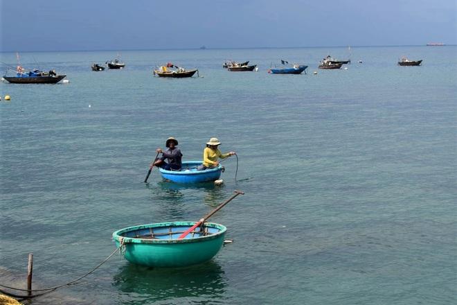Nhân viên du lịch Hội An về làm nông: Mình về nuôi cá và trồng thêm rau! - 7