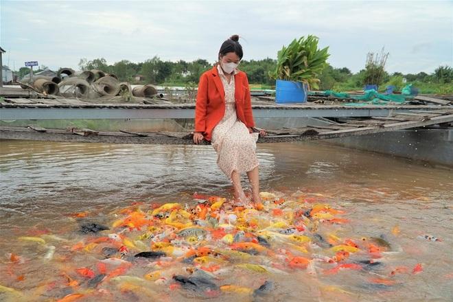 Lão nông Cần Thơ giàu lên nhờ cá thát lát và thủy quái trên sông - 7