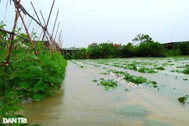 Hàng loạt thủy điện xả tràn, người dân vùng hạ du kéo nhau chạy lũ - 15