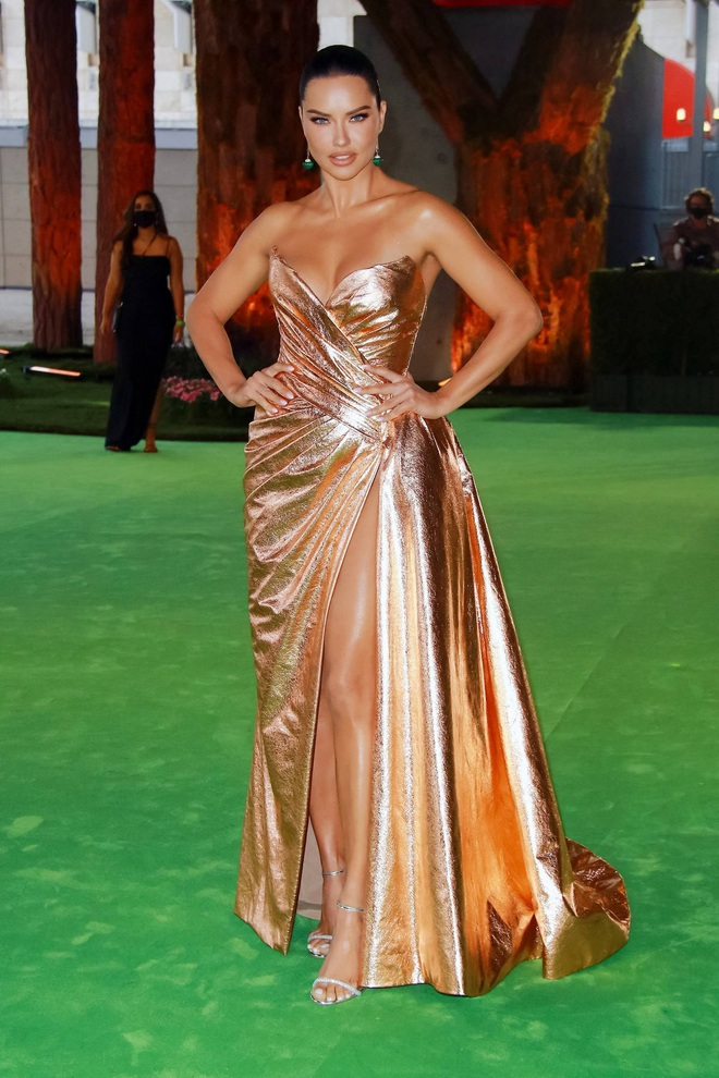 Dàn người đẹp Hollywood xúng xính váy áo tham gia dạ tiệc - 6