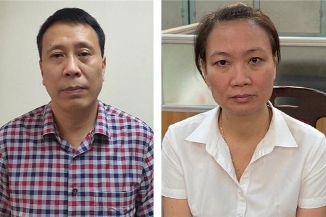 Hà Nội: Bắt Giám đốc Ban duy tu công trình hạ tầng nâng khống giá cây xanh - 1