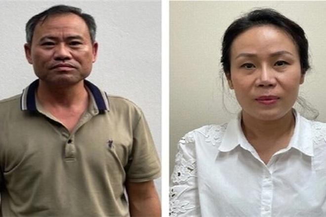 Hà Nội: Bắt Giám đốc Ban duy tu công trình hạ tầng nâng khống giá cây xanh - 2