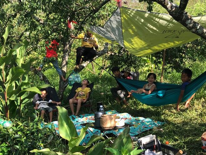 Mắc kẹt ở Mộc Châu do Hà Nội giãn cách, gia đình làm vườn đẹp mê - 10