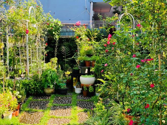 Giảng viên về hưu làm vườn nhiệt đới, trồng hoa hồng tặng vợ ở TPHCM - 2