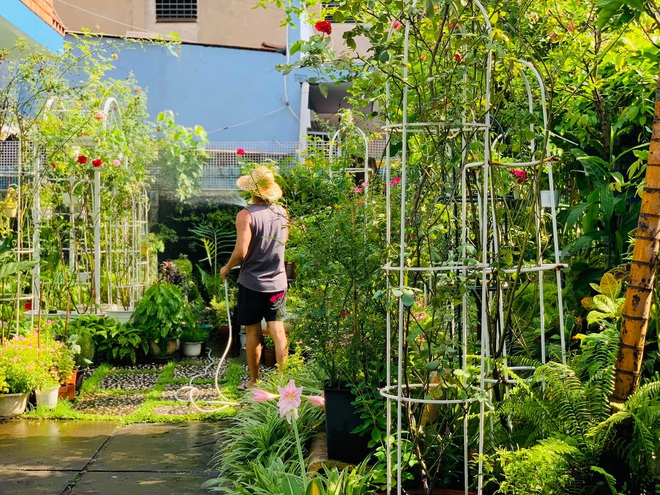 Giảng viên về hưu làm vườn nhiệt đới, trồng hoa hồng tặng vợ ở TPHCM - 3