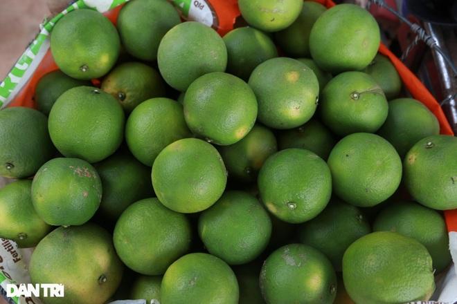 Nông dân khốn khổ tìm đầu ra cho hàng trăm tấn cam đặc sản - 6