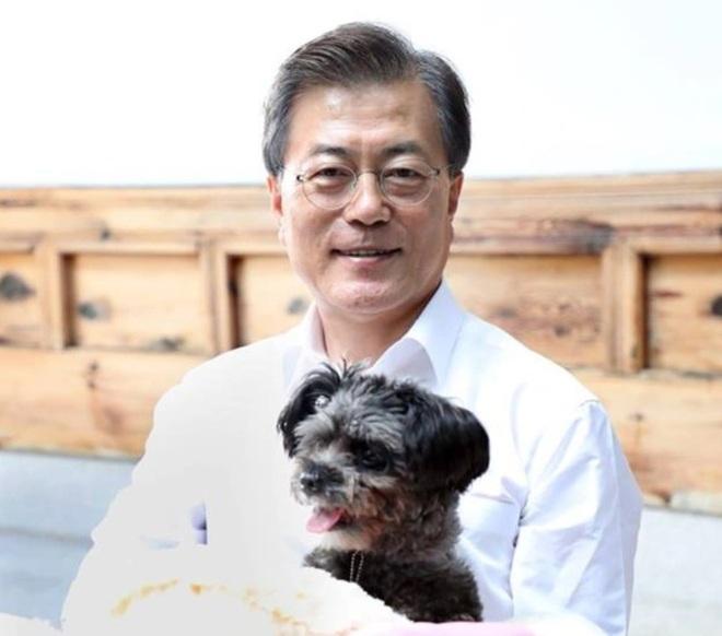 Tổng thống Hàn Quốc kêu gọi cân nhắc cấm ăn thịt chó - 1