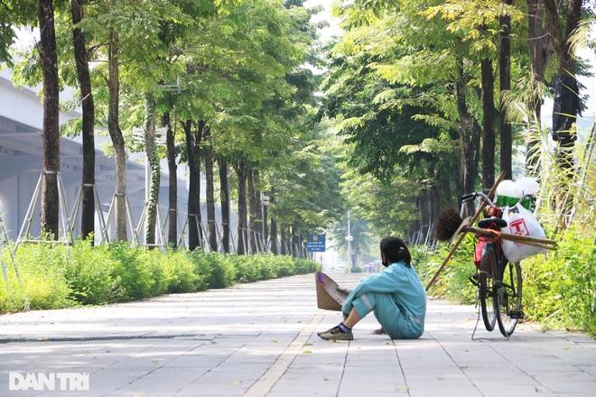 Cận cảnh gông cùm siết chặt hàng cây xanh đang tuổi lớn trên đường Hà Nội - 1