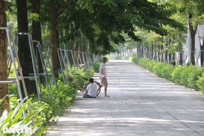 Cận cảnh gông cùm siết chặt hàng cây xanh đang tuổi lớn trên đường Hà Nội - 12