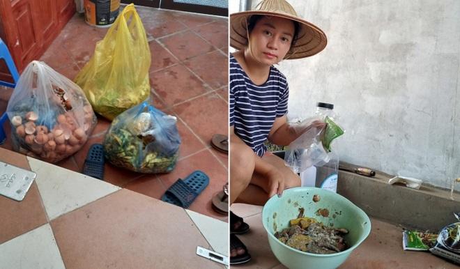 Gia đình làm vườn rau trên không xanh mướt nhờ rác thải nhà bếp - 3
