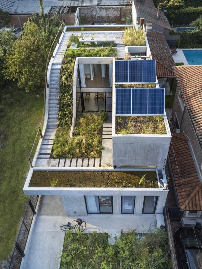 Nhà phố xanh mướt với sân vườn liên hoàn nối 3 tầng - 1