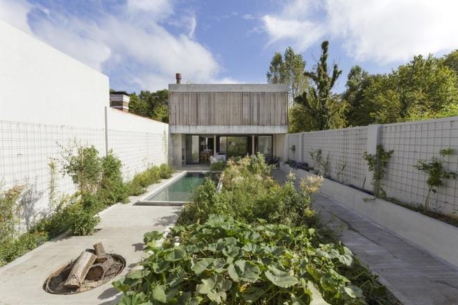 Nhà phố xanh mướt với sân vườn liên hoàn nối 3 tầng - 3