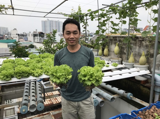 Vườn trồng rau, nuôi cá tươi sống trên sân thượng ở TPHCM - 10