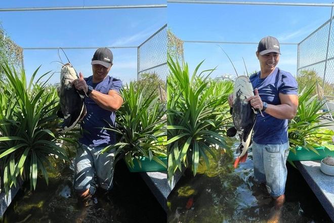 Vườn trồng rau, nuôi cá tươi sống trên sân thượng ở TPHCM - 8