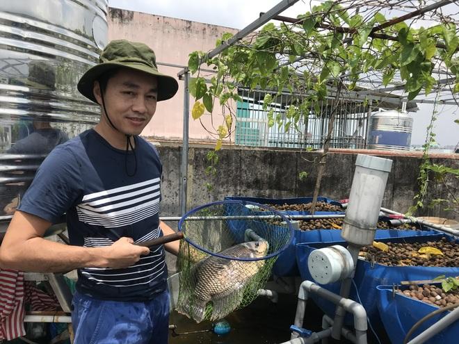 Vườn trồng rau, nuôi cá tươi sống trên sân thượng ở TPHCM - 15