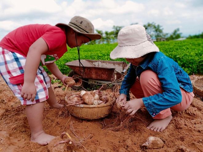 Ông bố gà trống nuôi con làm mảnh vườn gần 4.000m2 ở Bình Thuận - 14