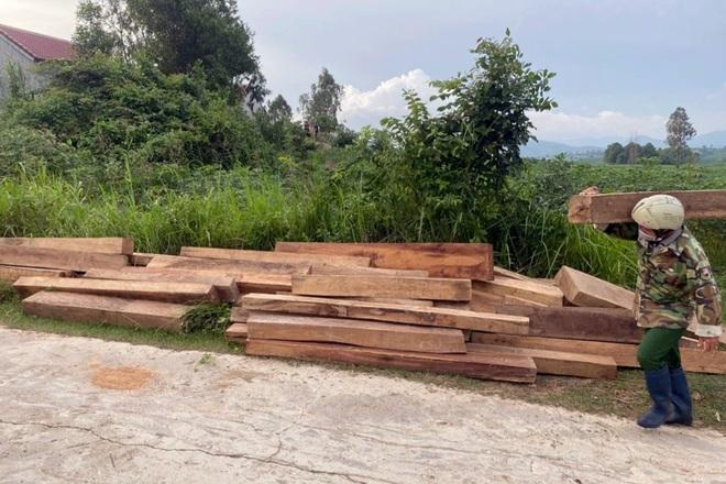 Phát hiện hơn 150 khúc gỗ bất hợp pháp trong nhà nhân viên quản lý rừng - 1