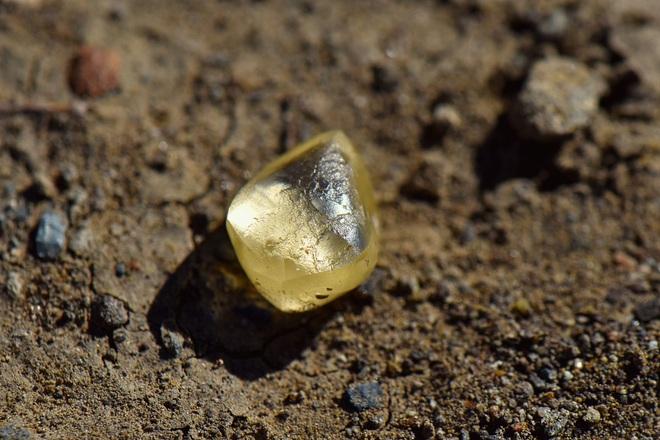 Đi chơi công viên, người phụ nữ tình cờ nhặt được viên kim cương tiền tỷ - 1