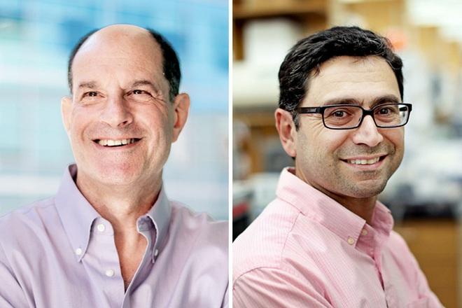 2 nhà khoa học Mỹ giành giải Nobel Y Sinh 2021 - 1