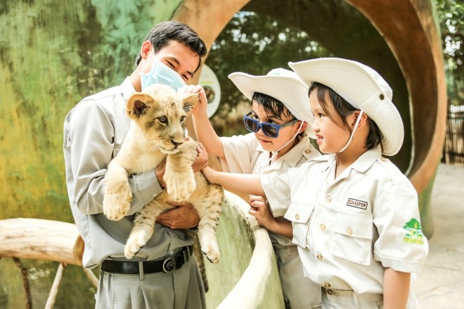 Một ngày vào vai nhà động vật học giữa thiên đường hoang dã Vinpearl Safari - 8