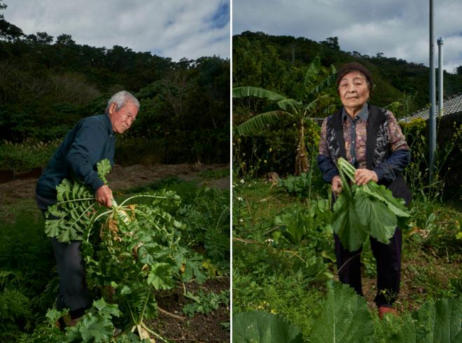 Bí quyết ăn uống giúp sống lâu của người dân làng trường thọ ở Nhật Bản - 6