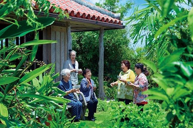 Bí quyết ăn uống giúp sống lâu của người dân làng trường thọ ở Nhật Bản - 1