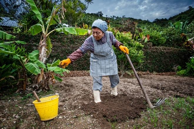 Bí quyết ăn uống giúp sống lâu của người dân làng trường thọ ở Nhật Bản - 10