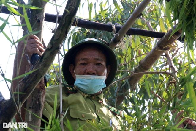 Thực hiện hơn 500 cuộc kiểm tra, truy quét nạn săn bắt chim trời - 4