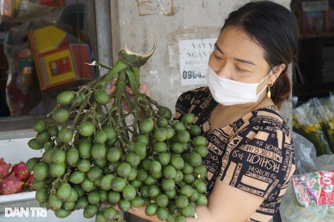 Bỏ túi hàng trăm triệu đồng từ vườn cau xứ Thanh Chương, Nghệ An - 2
