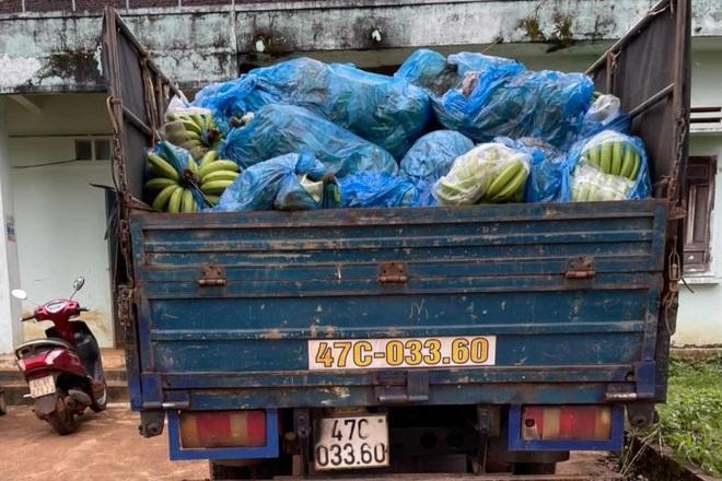 Tạm giữ xe tải chở 3 tấn chuối chặt trộm trong đêm  - 1