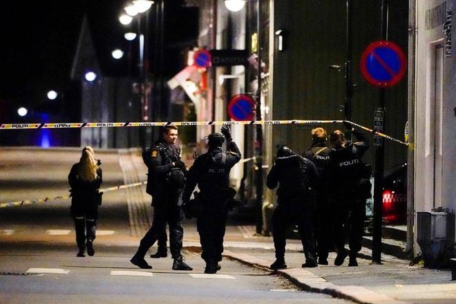5 người bị bắn chết bằng cung tên trong thảm kịch rúng động Na Uy - 1