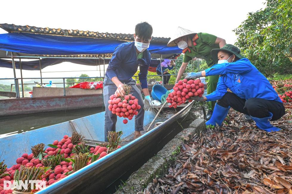 Công an huyện Lục Ngạn leo đồi, đi thuyền giúp nông dân thu hoạch vải - 16