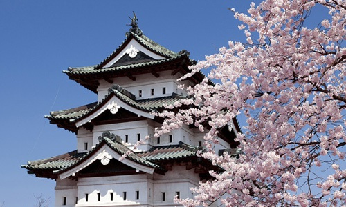 """Đại sứ quán Nhật Bản tại Việt Nam: Cảnh báo về những """"chiêu lừa"""" du học Nhật Bản"""