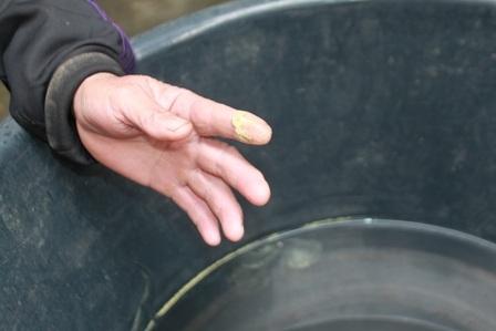 Lớp chất bột màu vàng chanh đọng lại trong nước mưa là do ô nhiễm không khí