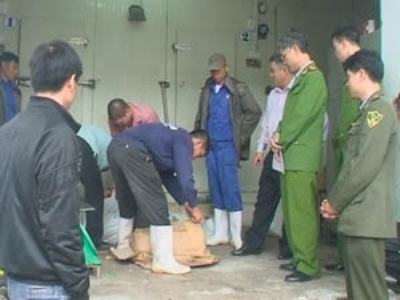 """Bắt giữ 5 tấn tê tê, kỳ đà chuẩn bị """"vượt biên"""" sang Trung Quốc"""