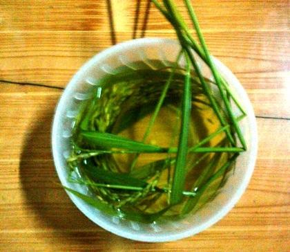 Bát canh lúa là món quan trọng nhất trong mâm cỗ mừng lúa mới của đồng bào vùng cao.
